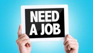 job search blog