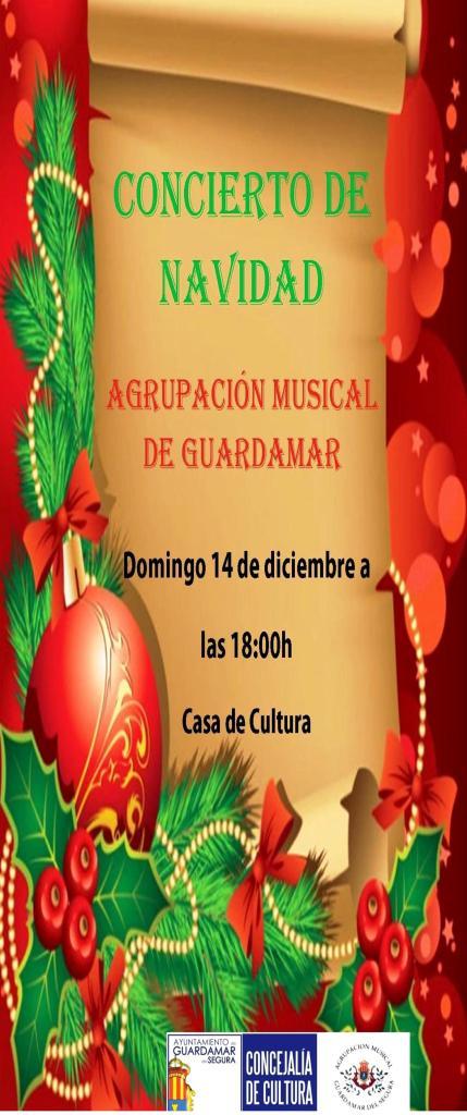 Programa de mano concierto de navidad 2014