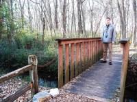 Patak és híd