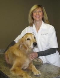 Dr. Lisa Lomsnes