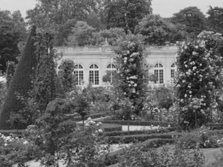 Roserar de Bagatelle, París, postal d'época.