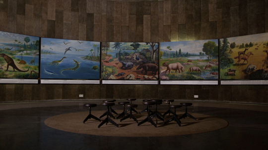 Image result for images of Museum of Evolution of Life chandigarh