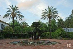 Sociedad de Amigos del Jardín Botánico de Córdoba