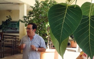 Alfonso Jiménez hablando de los ficus