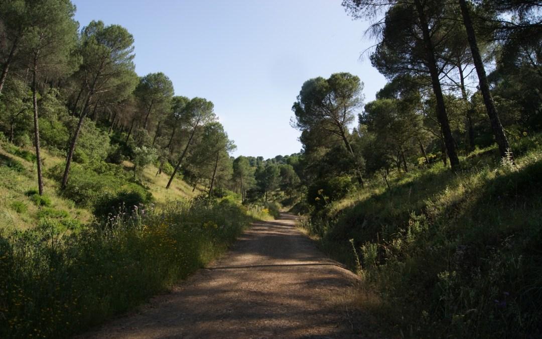 Ruta histórico-natural por la Sierrezuela de Villafranca