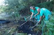 Trabajadores de FNYH tratando la Ludwigia peploides