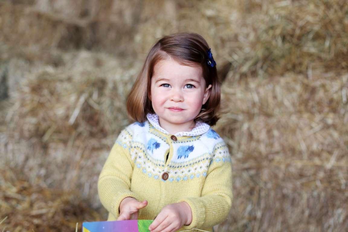 Knit Princess Charlotte's Sheep Cardigan (Here's the Pattern!)