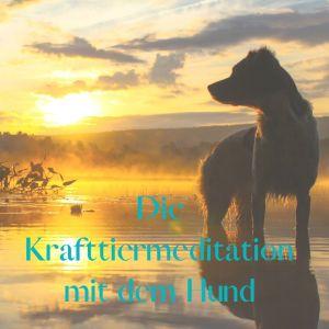 Amika Krafttier Meditation Hund