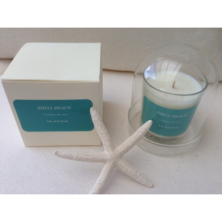 Shell Beach candle