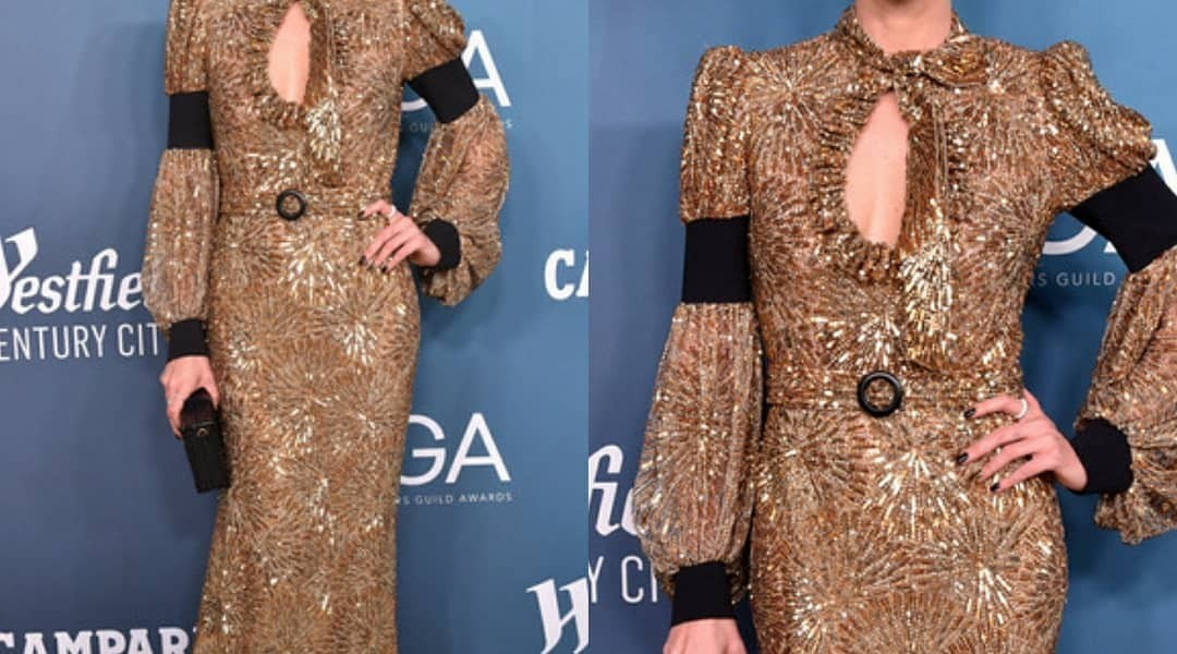 Chalize Theron Looked Regal In Louis Vuitton For Costume Designers Guild Awards