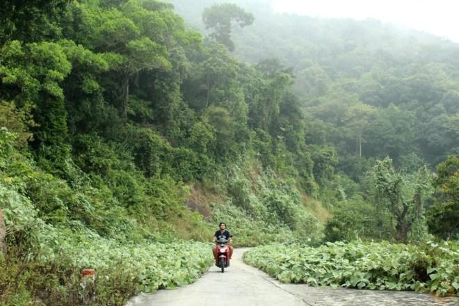 Monkey Mountain hostel danang