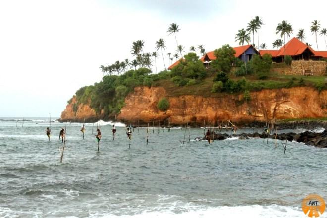 Stilt fishermen, Weligama Bay, Sri Lanka