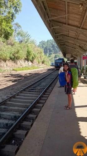 Treno Ella-Kandy come prenotare