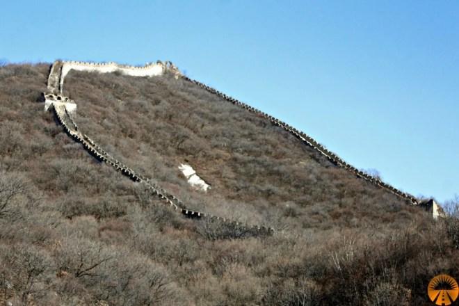 Ox Horn Edge Wall