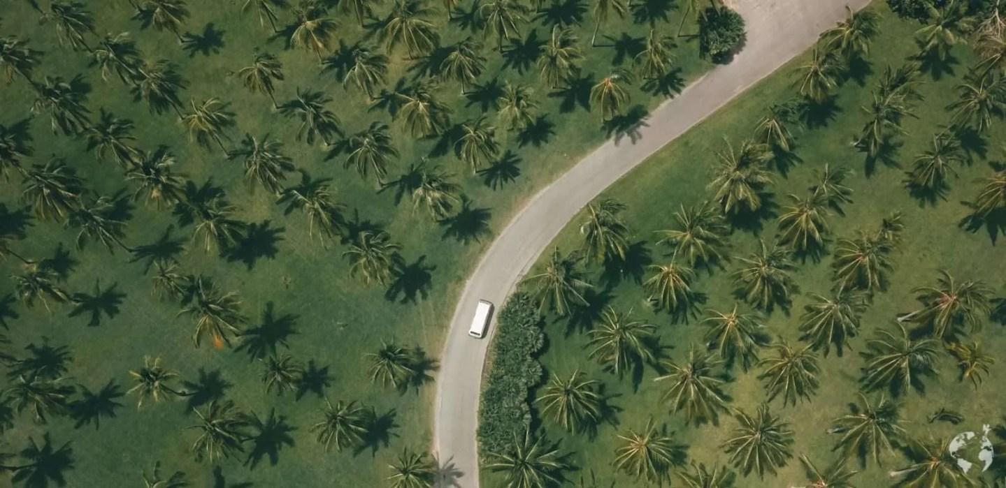 Thala Beach viaggio on the road trip Australia