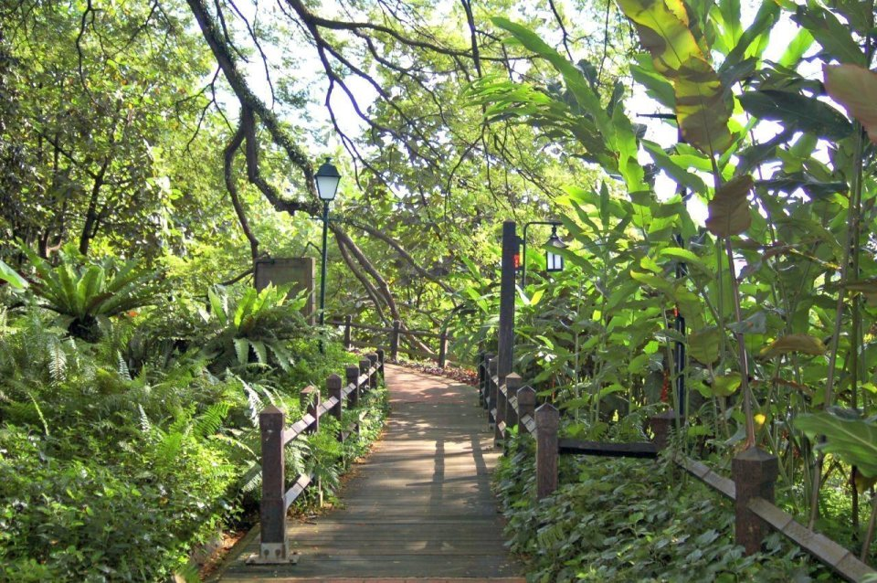 singapore parco centro città