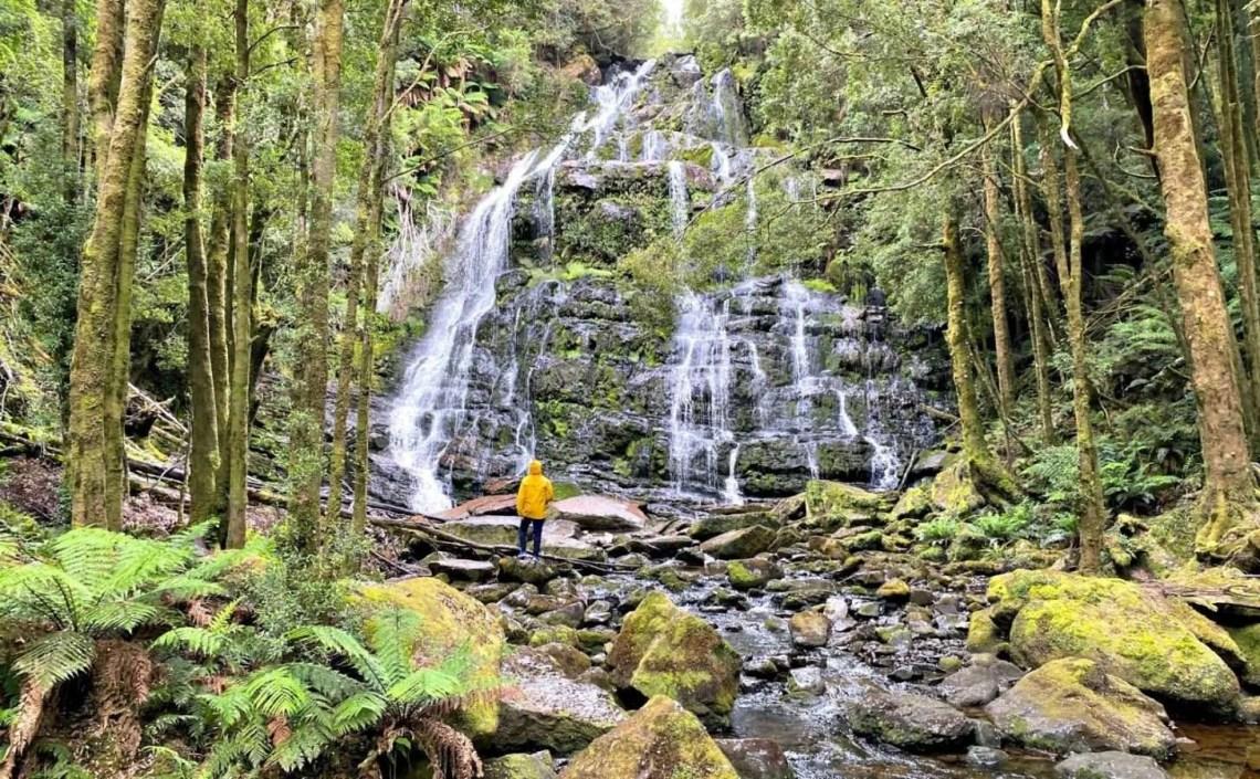 Nelson Falls Tassie