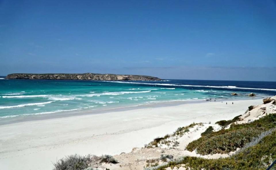 Best beach south australia eyre