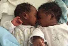 Des bébés jumeaux (image d'illustration)