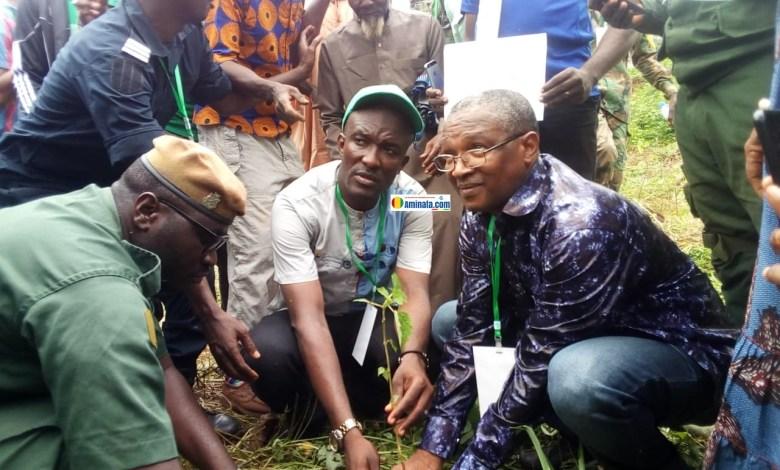 Le ministre de l'élevage, Roger Patrick lors de reboisement à Demoudoula