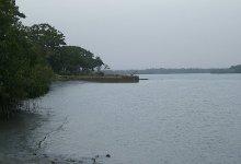 Le Rio Pongo