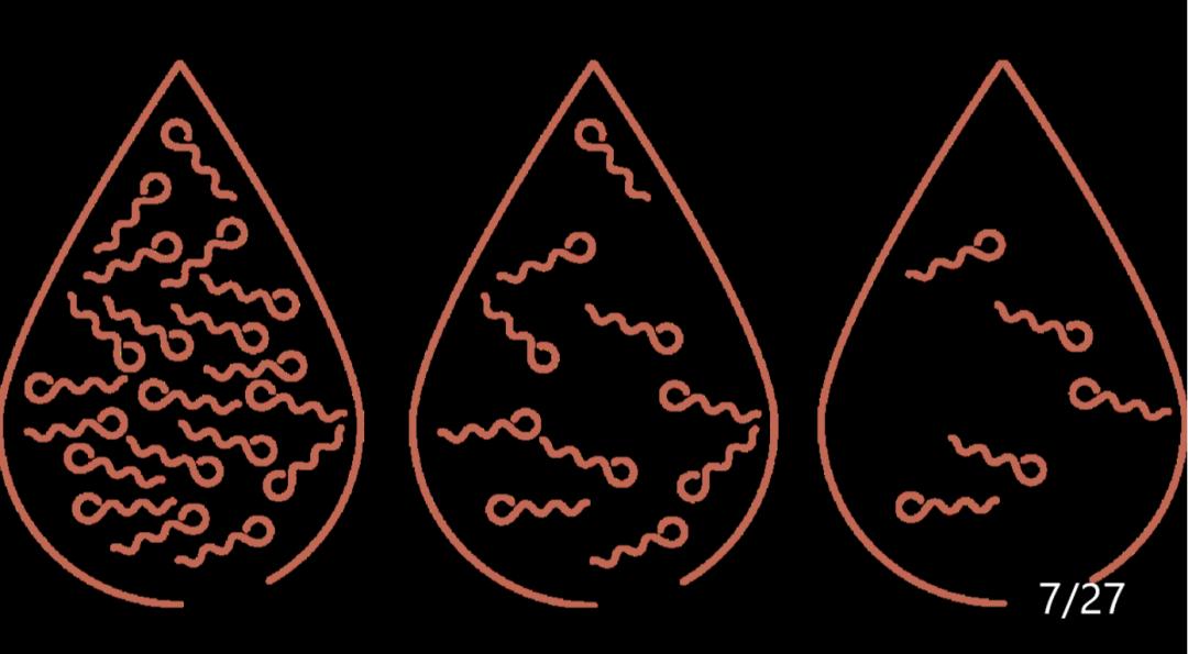graine de courge - améliore la qualité du sperme