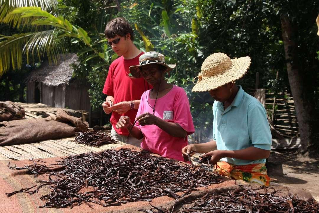producteur Madagascar