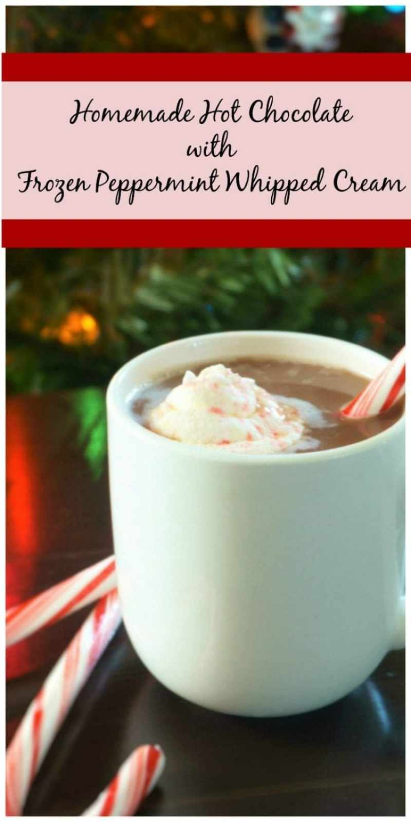 Homemade Hot Chocolate with Frozen Peppermint Whipped Cream: Homemade hot chocolate that will blow your mind. Simple, clean ingredients make this drink rich and velvety and a sweet frozen surprise adds a kick of peppermint flavor and a bit of magic.