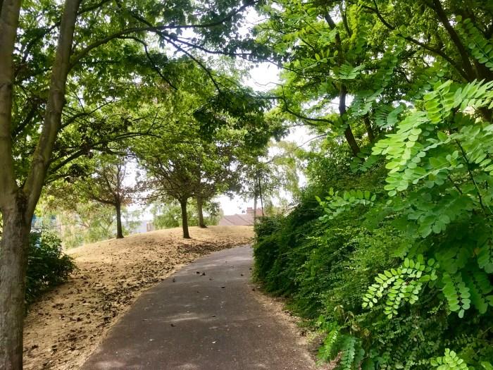Mindful running blog, Folkestone Gardens, Image by Nadine Grant