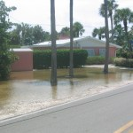 T.S. Debby flooding yard