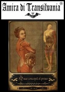 Tarocchi dell'antica medicina e anatomia volume 1 Un mazzo di 22 carte grandi di dimensioni 10 x 14 centimetri-vol-3