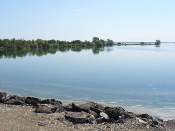 Sortie au Lac du Der