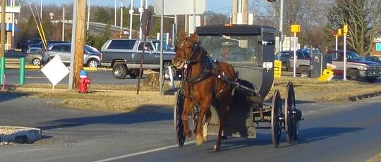 Amish Communities America Map