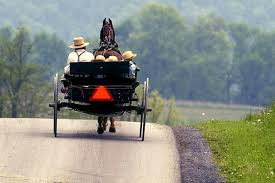 crimes against Amish in buggies such as these