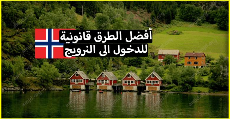 الهجرة الى النرويج .. تعرف على أفضل الطرق للدخول الى النرويج بشكل قانوني