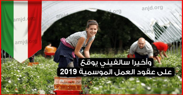 Photo of وأخيرا سالفيني يوقع على عقود العمل الموسمية 2019 .. اليكم آخر المستجدات