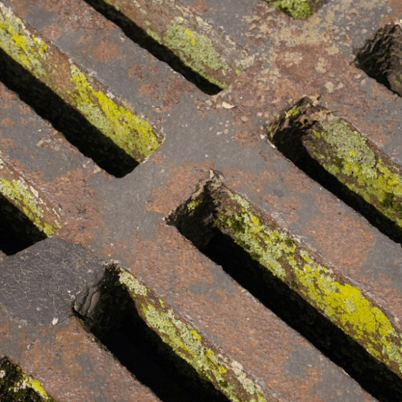Mossy Vent