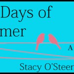 Book Release and Review: Endless Days of Summer by Stacy O'Steen