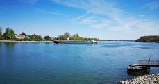 Rheinufer Nierstein