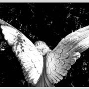 Questioning angels