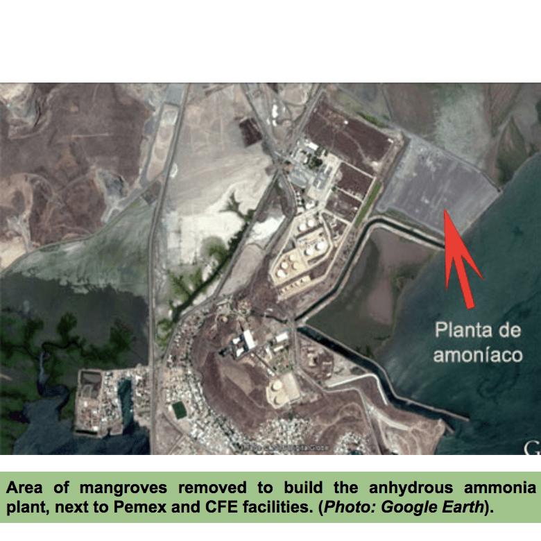 Proman Topolobampo Update Mexican Environmental Permits