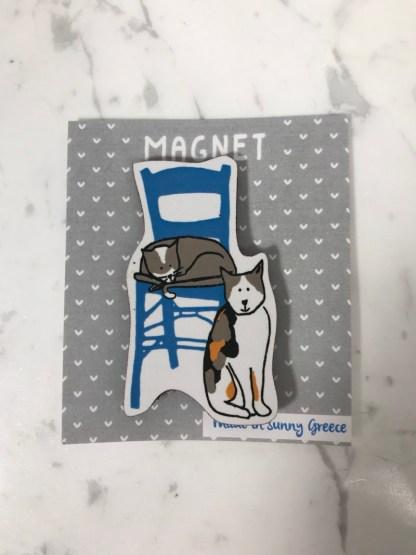 Magnet_Cat