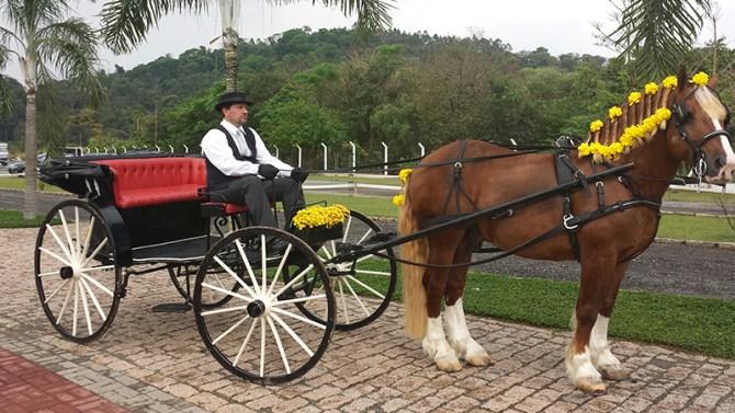 home-carruagem