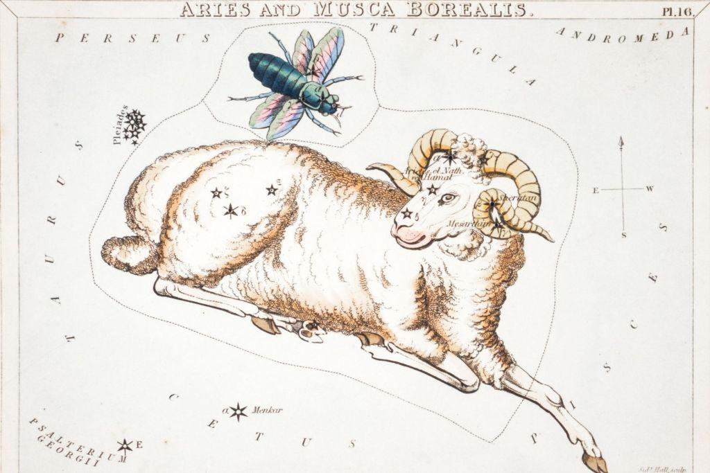 Your Horoscope Aries