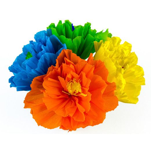 Mexican Paper Flowers   Mexican Party Supplies at Amols  Fiesta Cinco de Mayo Decorations Chayo s Flowers  8   Image