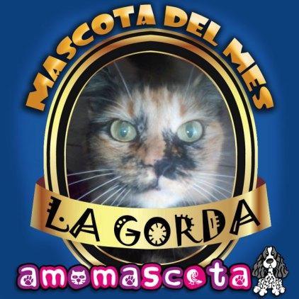MASCOTA-DEL-MES-GORDA