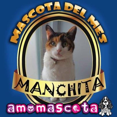 MASCOTA-DEL-MES-MANCHITA