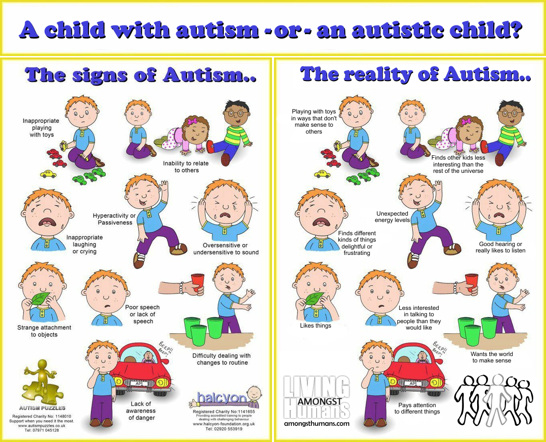 The Autistic Child
