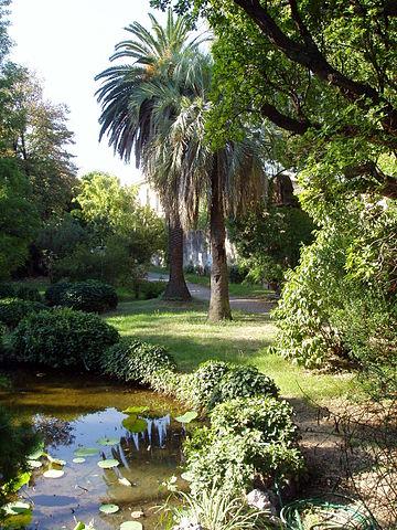 Botanical garden in Pisa was established in 1544 under Cosimo I de'Medici