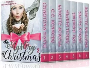 Mystery of Christmas 2 Multi-Author Collection – New Release